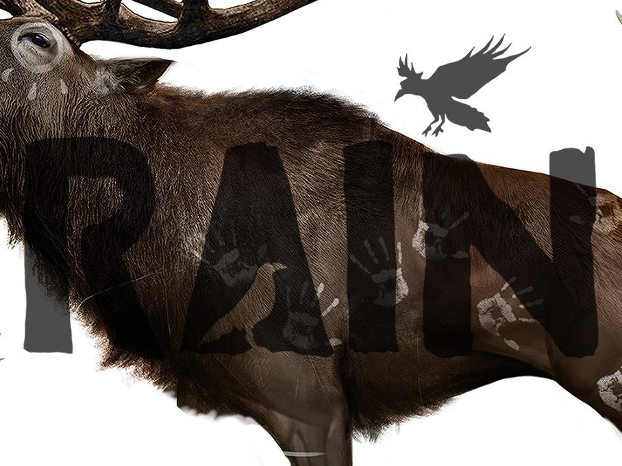 'Rain' Animals