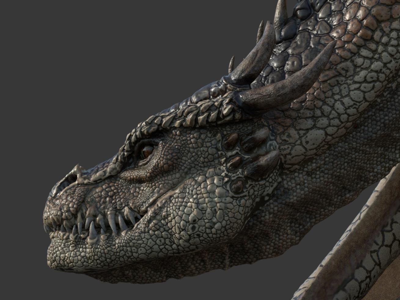 The Desert Dragon